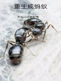 重生成蚂蚁之开局一个蚂蚁窝