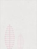 三国:从徐州开始得天下